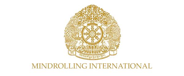 Mindrolling International